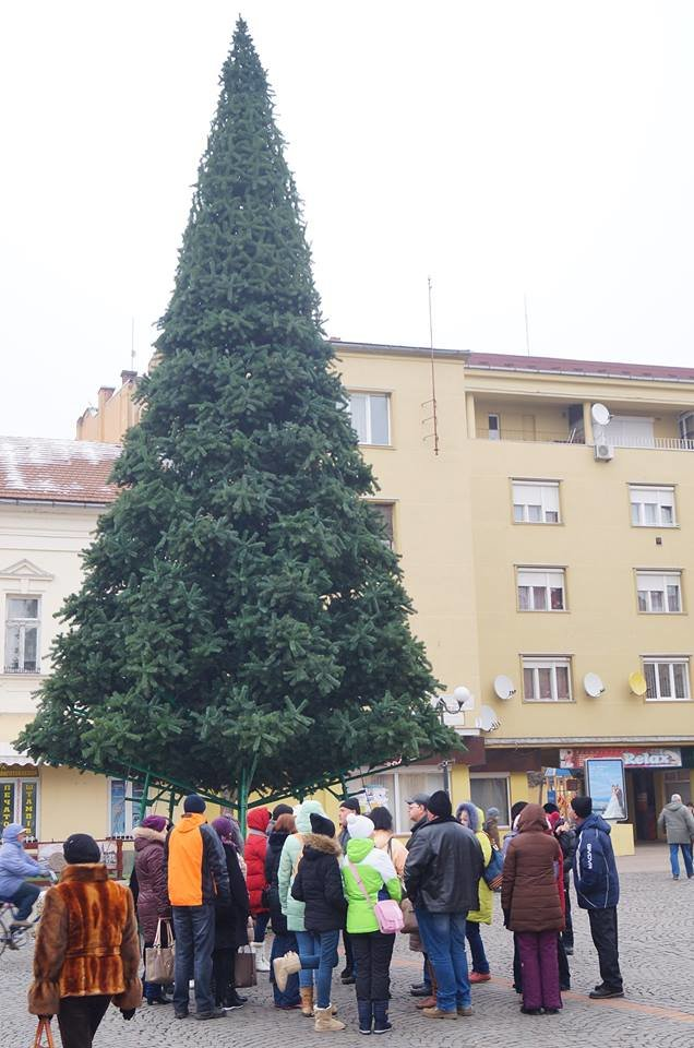 Як виглядає головна новорічна ялинка Мукачева: фото, фото-1