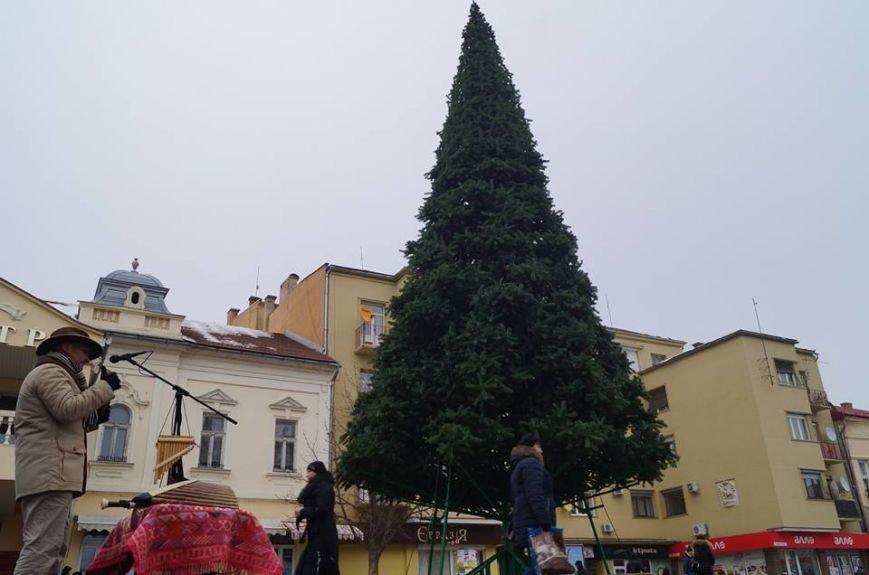 Як виглядає головна новорічна ялинка Мукачева: фото, фото-3