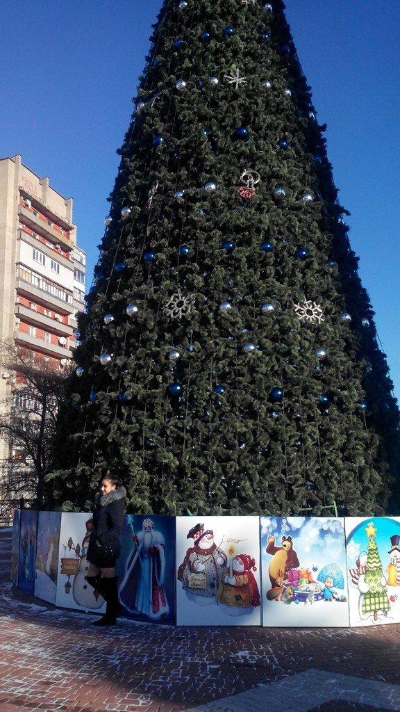 Горожане делают первые селфи на фоне главной елки (фото), фото-2