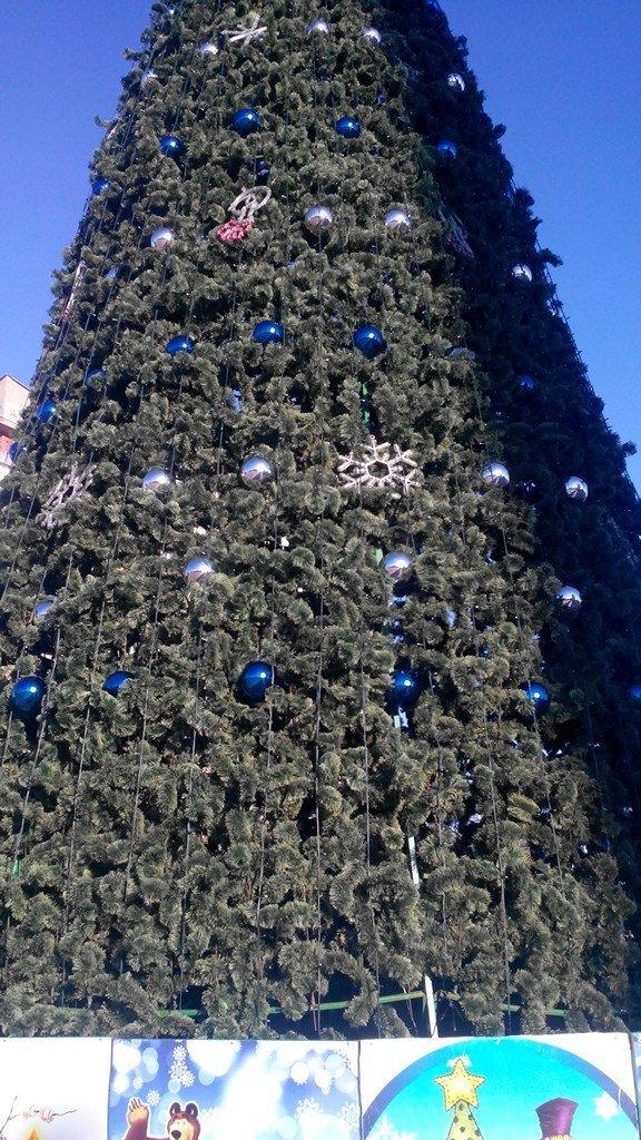 Горожане делают первые селфи на фоне главной елки (фото), фото-1