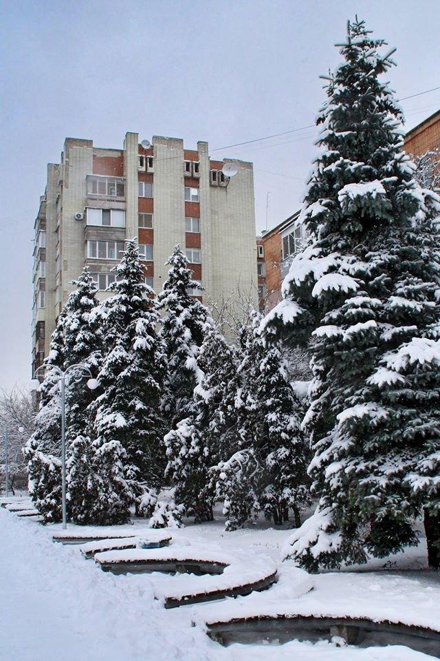 Зимові-3