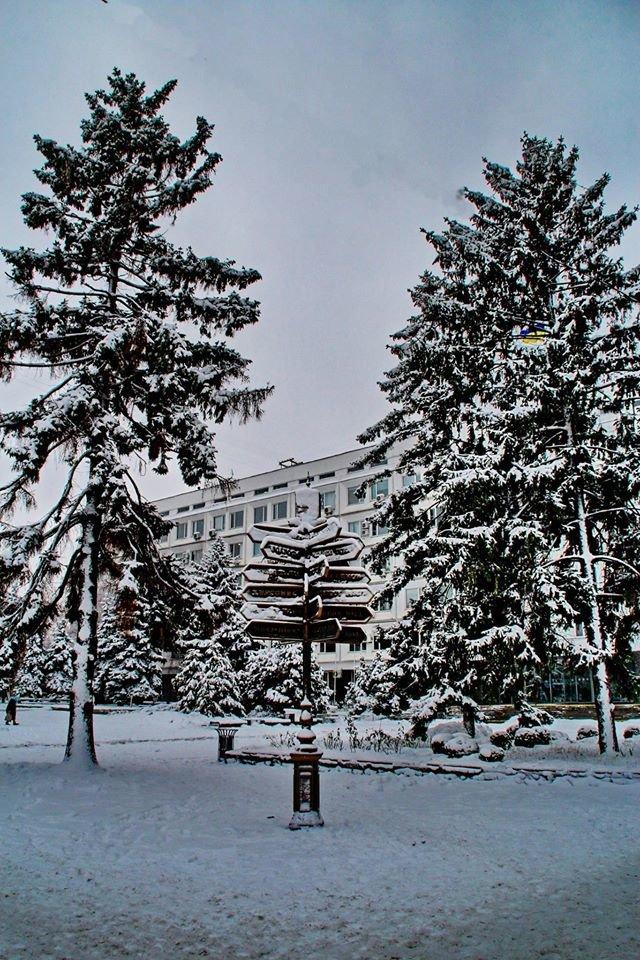 Зимові-6