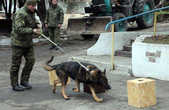 """К-9: донецкая полиция показала """"униформу"""" для четвероногих, фото-3"""