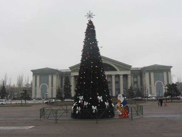 Соратница Буткова считает Донецк территорией другого государства?, фото-1