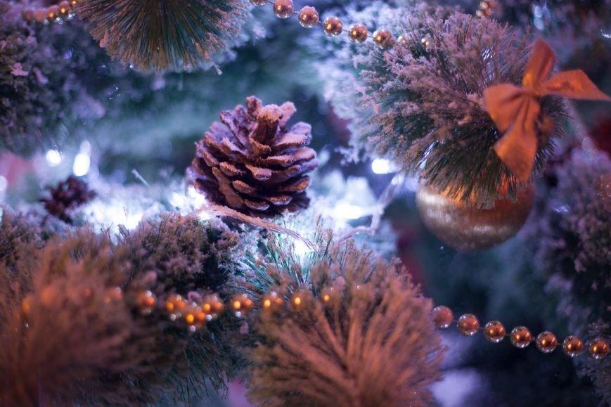 Не пропусти АКЦИЮ в лучшей новогодней студии г. Мариуполя, фото-13