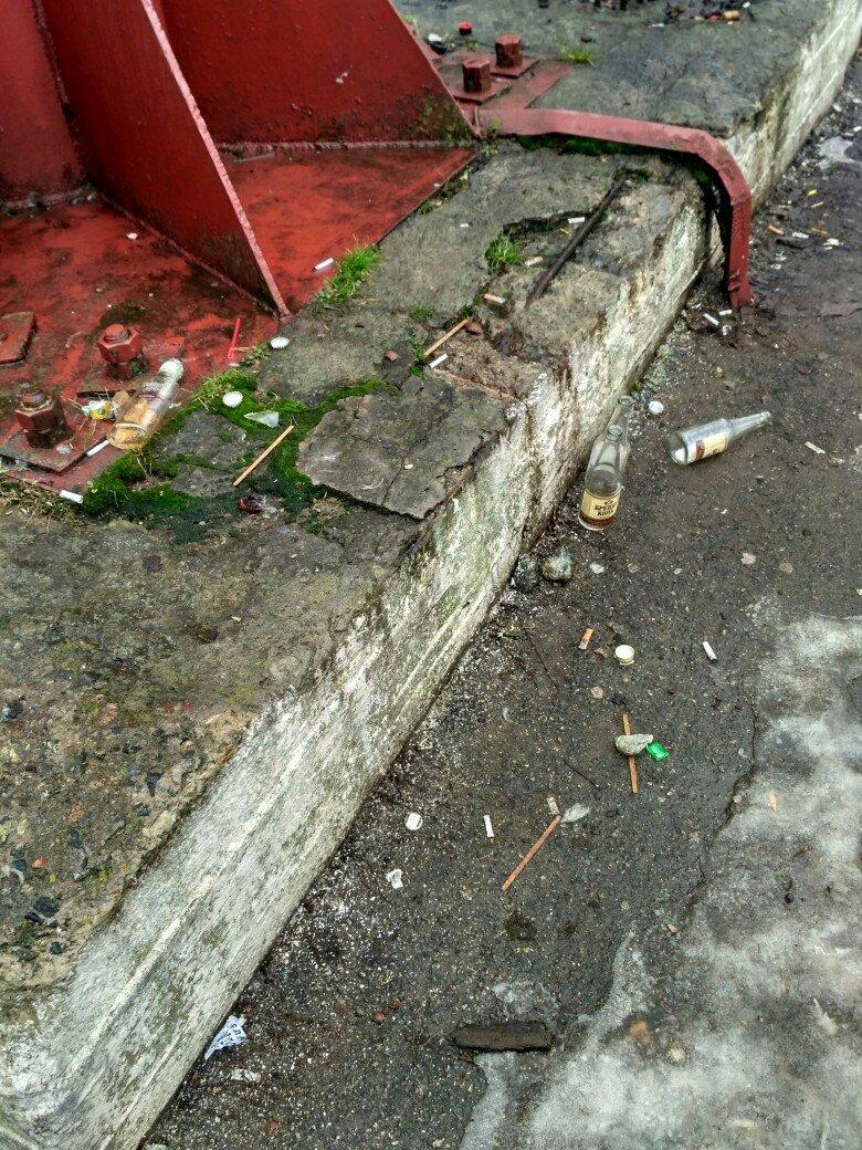 Грязные обочины в Вишневом (ФОТО), фото-11