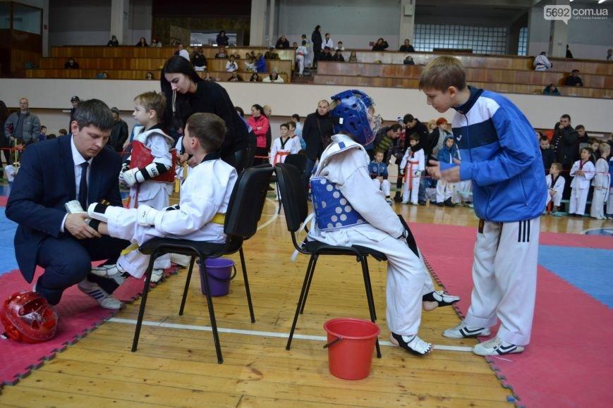 Чемпионат области по тхэквондо состоялся в Каменском, фото-9