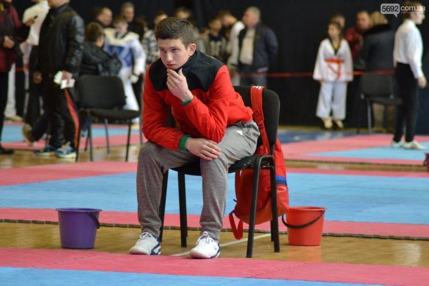 Чемпионат области по тхэквондо состоялся в Каменском, фото-7