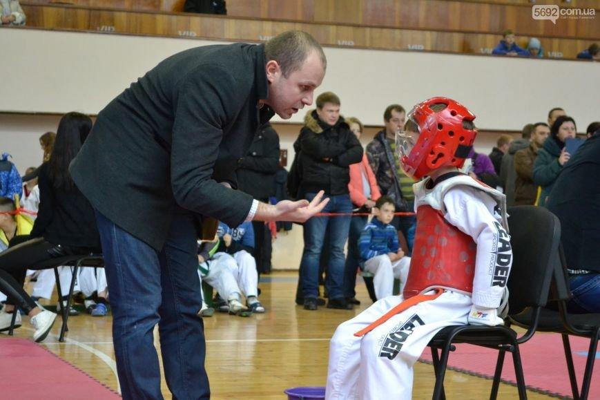 Чемпионат области по тхэквондо состоялся в Каменском, фото-8