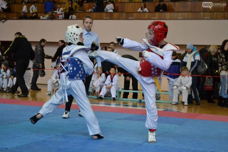 Чемпионат области по тхэквондо состоялся в Каменском, фото-10