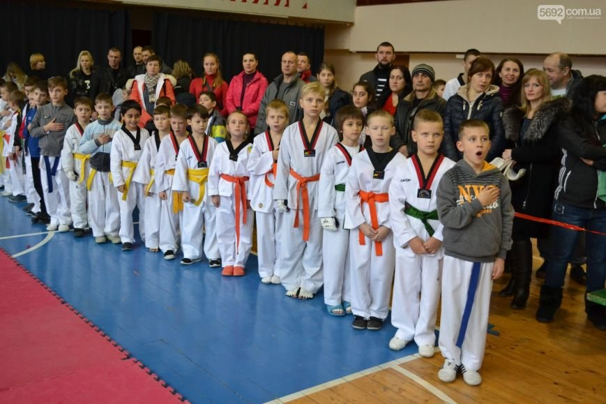 Чемпионат области по тхэквондо состоялся в Каменском, фото-1
