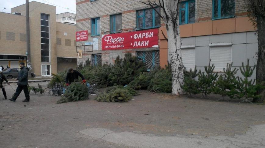 Что и почем продают на хвойном базаре в Мелитополе (фото), фото-1