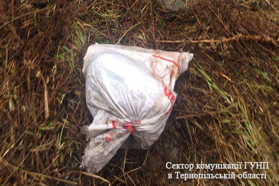 Поліцейські жахнулися, коли це побачили: моторошні подробиці жахливого вбивства на Тернопільщині (Фото), фото-2