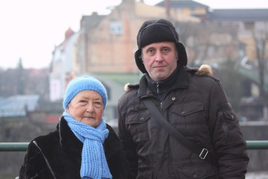 «Нашестя» лебедів в Ужгороді: реакція городян, яскраві фото та думка експерта (РЕПОРТАЖ), фото-6