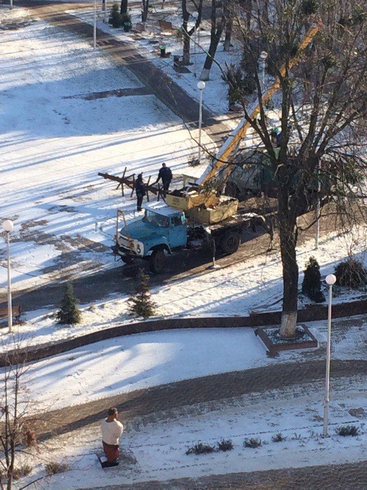 ФОТОФАКТ: В Вишневом ставят новогоднюю елку, фото-1