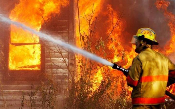 На Закарпатті сталася пожежа в урочищі, фото-1