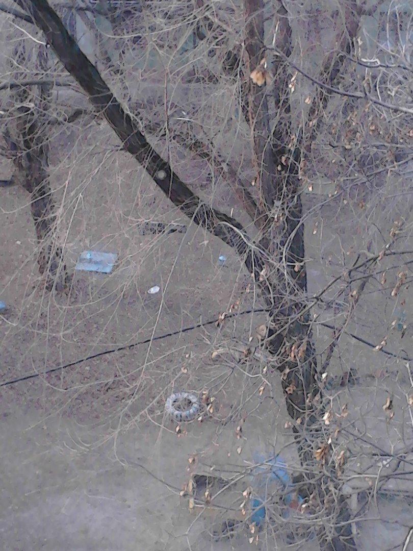 """""""Подвал затоплен стоками, кабель висит на деревьях, а возле дома укладывают плиточку"""", - криворожане """"кричат"""" о наболевшем (ФОТО), фото-2"""