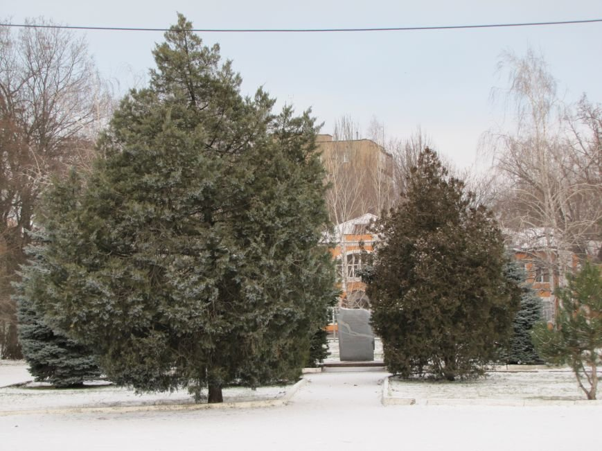 Мелитопольскому парку дадут новую жизнь (фото, видео), фото-15