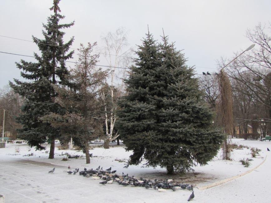 Мелитопольскому парку дадут новую жизнь (фото, видео), фото-9