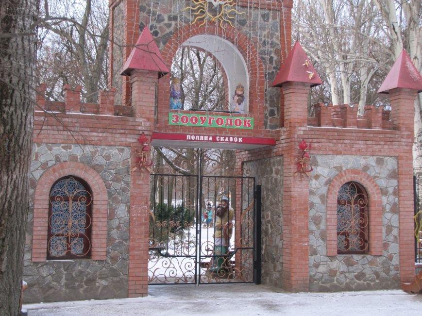 Мелитопольскому парку дадут новую жизнь (фото, видео), фото-21