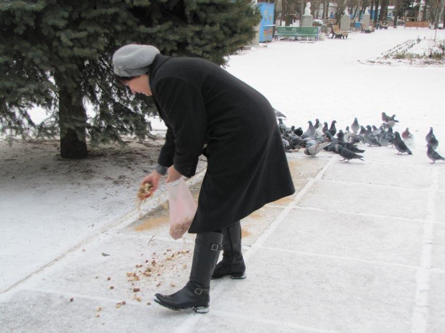 Мелитопольскому парку дадут новую жизнь (фото, видео), фото-12