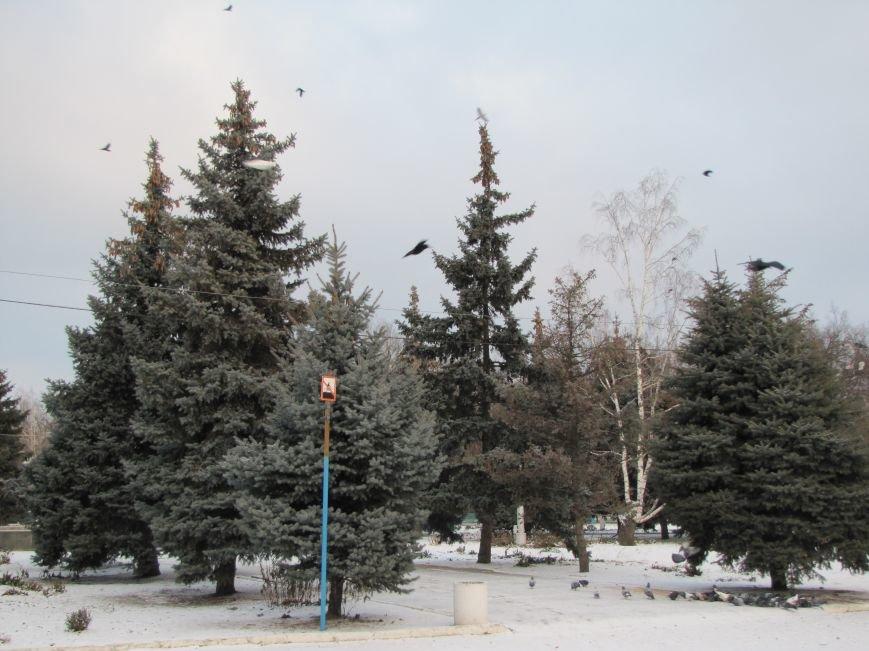 Мелитопольскому парку дадут новую жизнь (фото, видео), фото-17