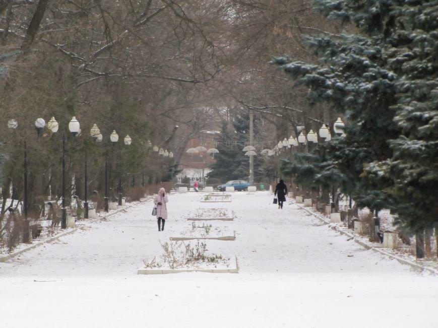 Мелитопольскому парку дадут новую жизнь (фото, видео), фото-14