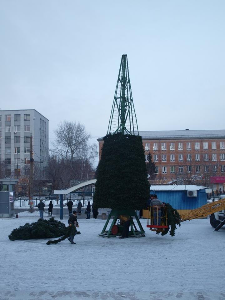 Новогоднюю елку Киевского района Полтавы «зажгут» 20 декабря, фото-1