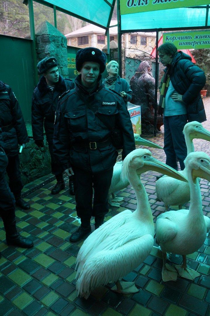 Военнослужащие части 6919 Федеральной службы войск нацгвардии побывали на экскурсии в Ялтинском зоопарке, фото-1