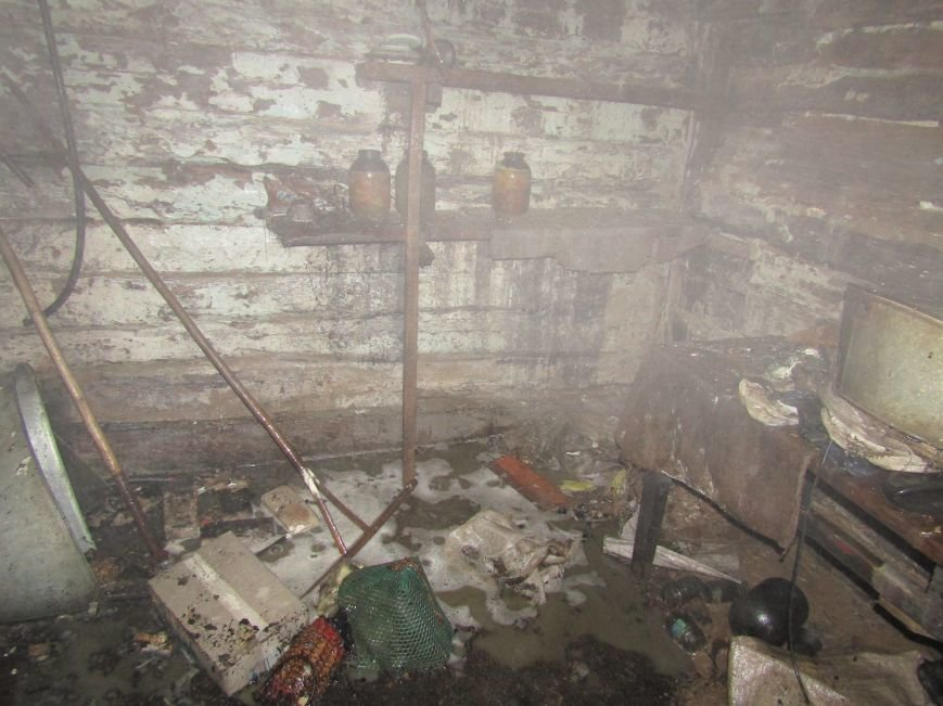 Смертельна пожежа у селі Стара Романівка Новоград-Волинського району забрала життя двох людей (ФОТО), фото-2