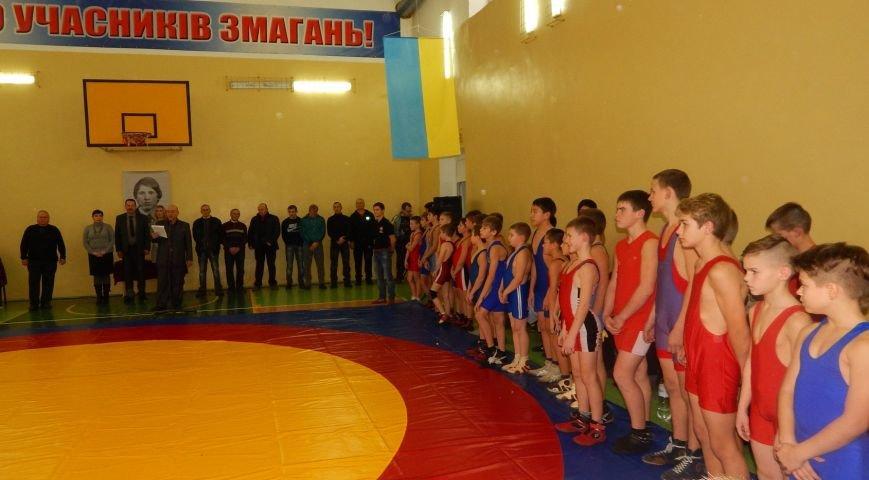 Борцы-вольники выступили на турнире в Веселом (фото), фото-1
