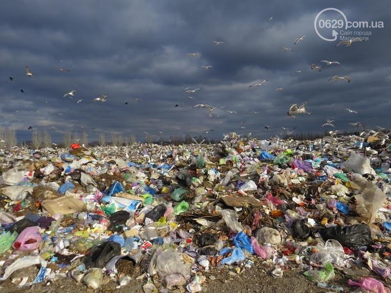 В Мариуполе опасные бытовые отходы попадают на городской полигон (ФОТО), фото-2