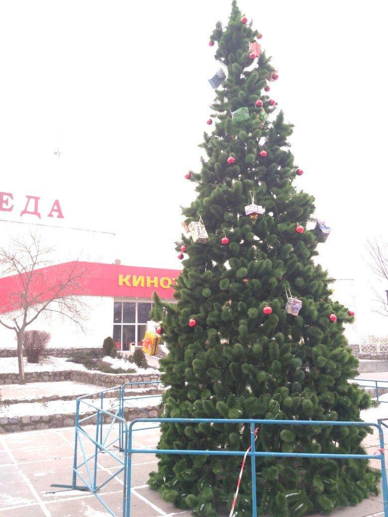 "На ""Победе"" установили новогоднюю елку (фото), фото-2"