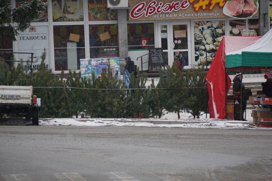 В Каменском открылись елочные ярмарки, фото-2