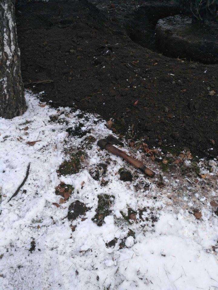 """Криворожане не дали чиновникам выкопать голубую ель """"для пересадки"""" (ФОТО), фото-2"""