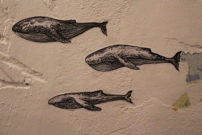 «У кого-то и вовсе в голове гуляет ветер, а у меня живут киты». В «Арт-пространстве» состоялась дебютная выставка витебской художницы-воло..., фото-10