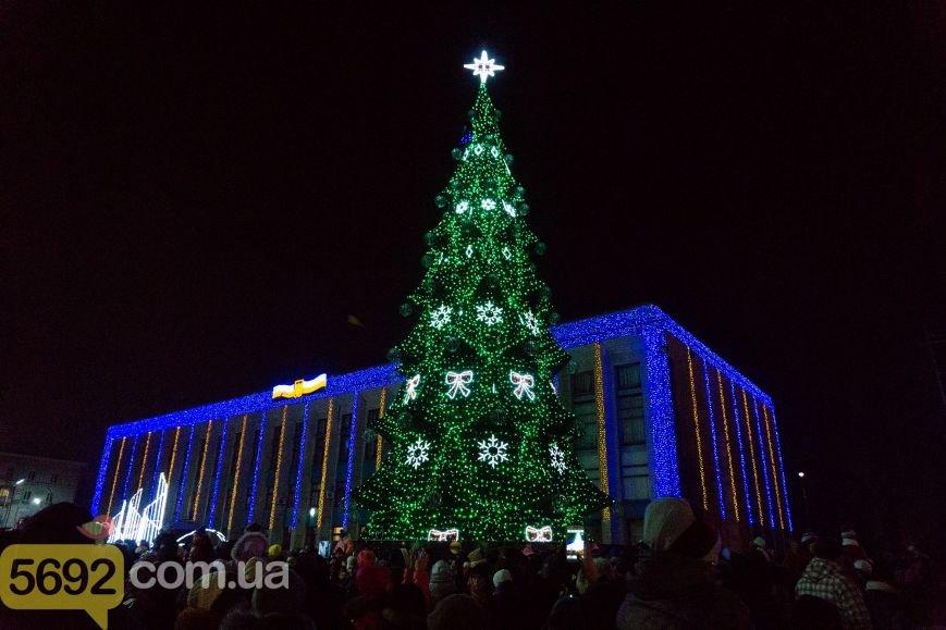В Каменском тысячи горожан пришли на открытие новогодней елки и ледового катка, фото-1