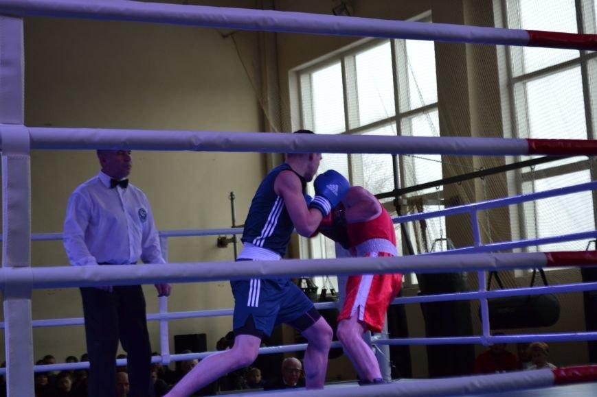 В Кривом Роге прошел 5-й Открытый кубок по боксу памяти Клевцова (ФОТО), фото-12