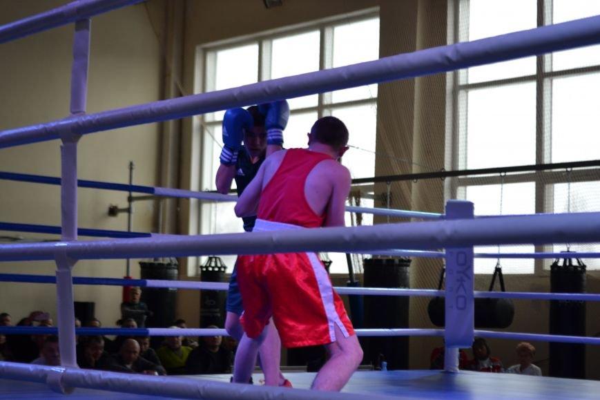 В Кривом Роге прошел 5-й Открытый кубок по боксу памяти Клевцова (ФОТО), фото-10
