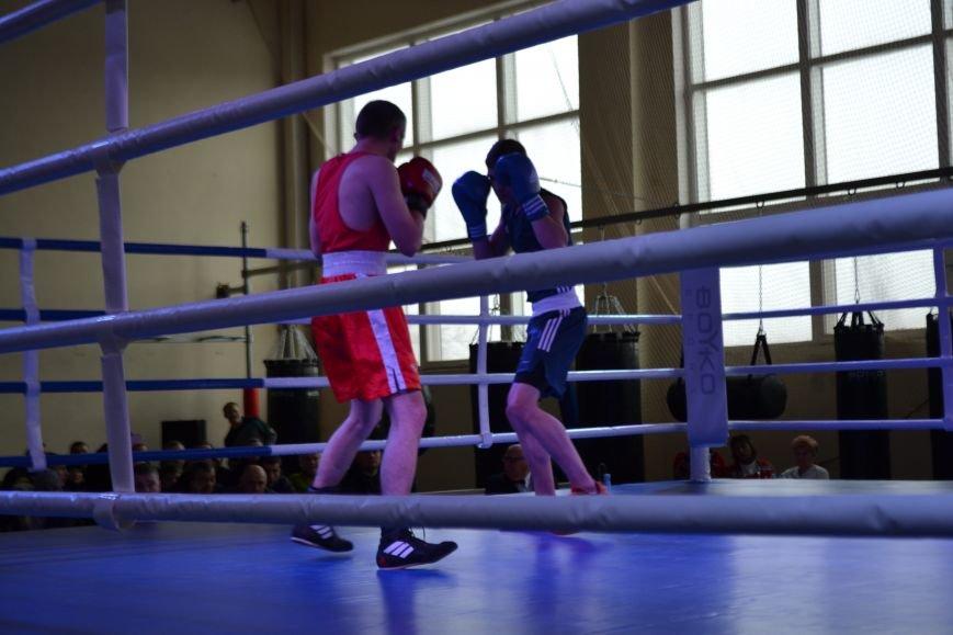 В Кривом Роге прошел 5-й Открытый кубок по боксу памяти Клевцова (ФОТО), фото-11
