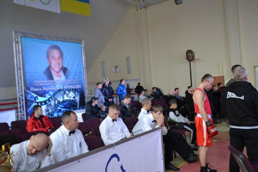 В Кривом Роге прошел 5-й Открытый кубок по боксу памяти Клевцова (ФОТО), фото-7
