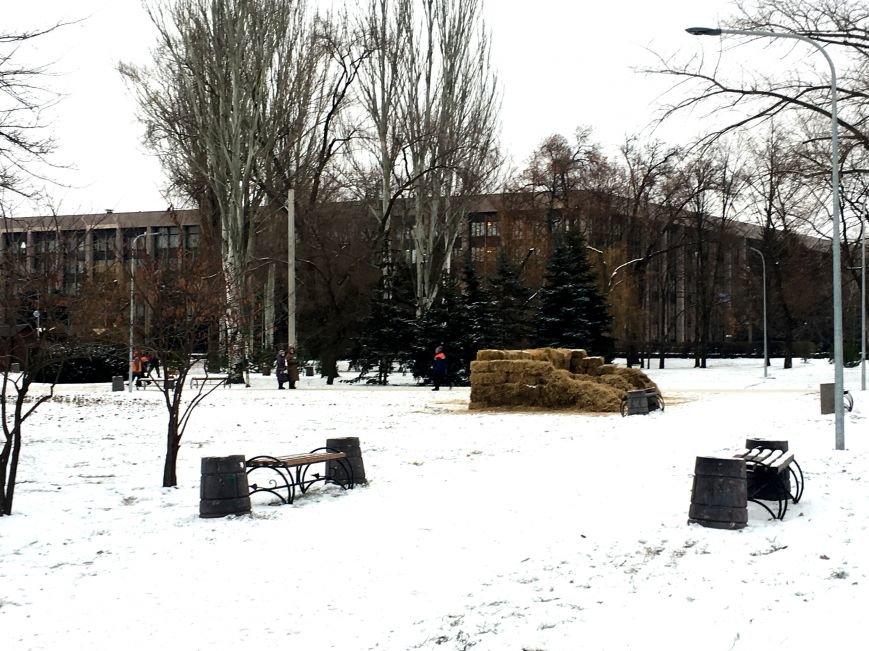 В парке Героев идут последние приготовления к открытию главной елки Кривого Рога (ФОТО), фото-2