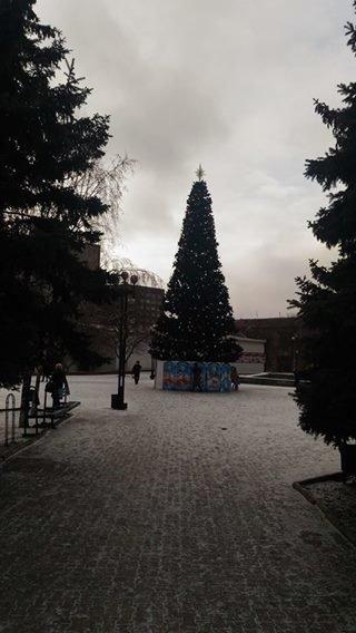 В Мариуполе районные елки установили раньше главной городской (ФОТО), фото-1
