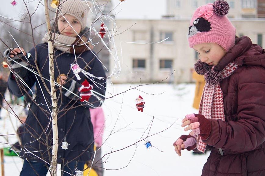 Березовую рощу украсили к Новому году, фото-4