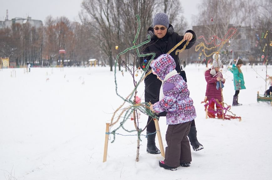 Березовую рощу украсили к Новому году, фото-3