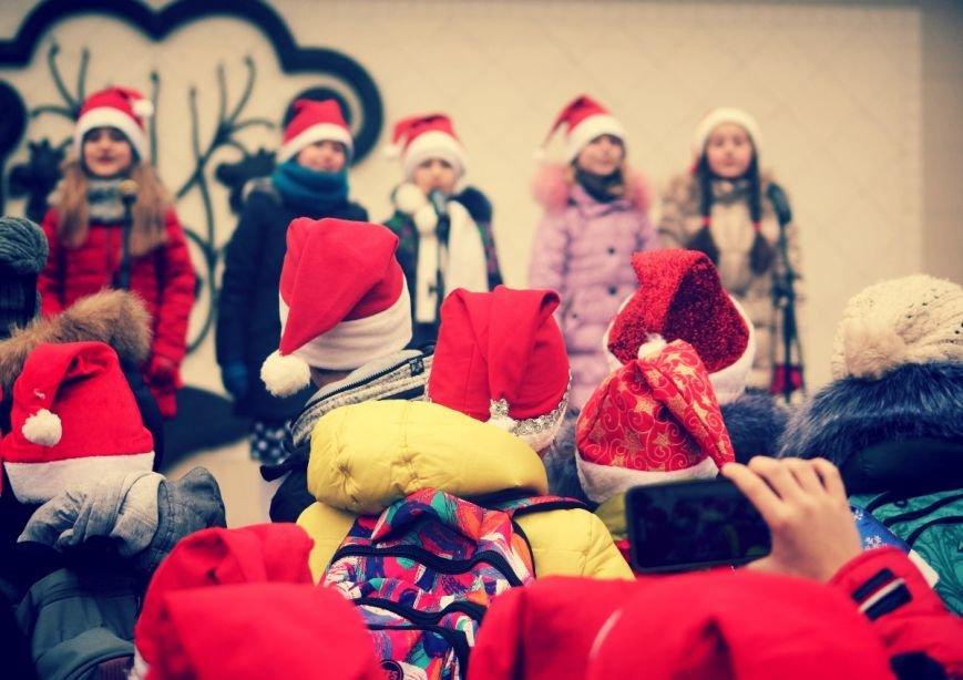 В Ужгороді пройшов ювілейний парад Миколайчиків: фоторепортаж, фото-15