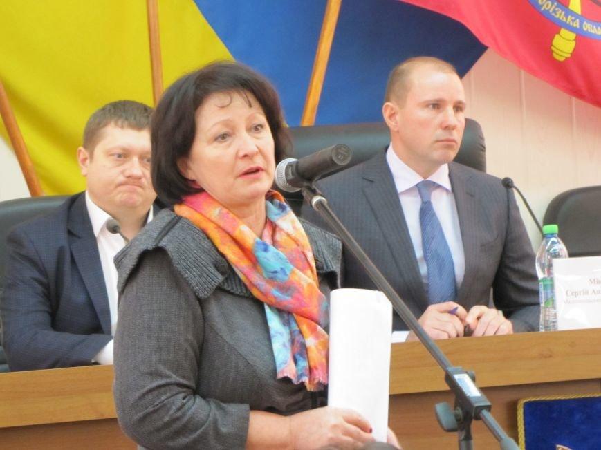 В Мелитополе под аплодисменты приняли бюджет-2017 (фото, видео), фото-5