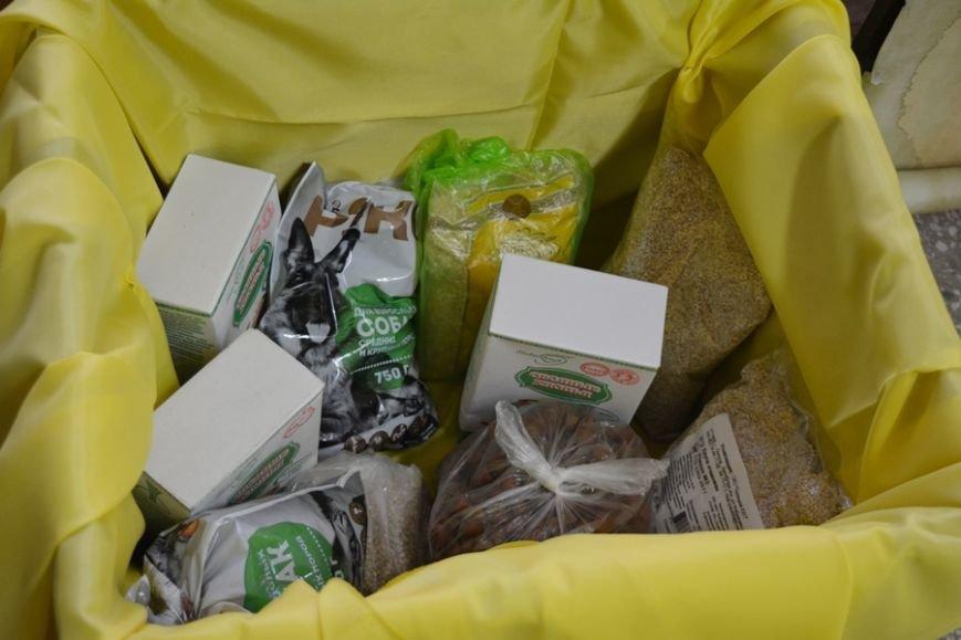 Елочные игрушки из бабушкиных сундучков и территория добра: чем живет Дворец детей и молодежи в канун Нового года?, фото-7
