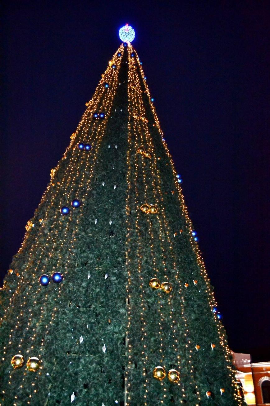 Как выглядит Полтава ночью накануне Нового Года, фото-9