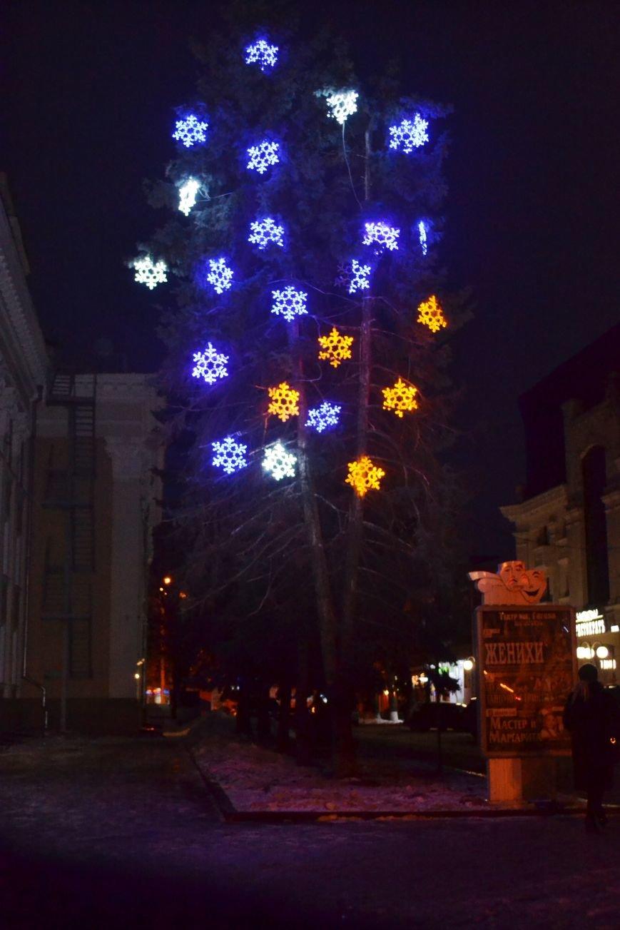 Как выглядит Полтава ночью накануне Нового Года, фото-10